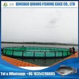 تجهيز زراعيّ, سمكة قفص يعوم في بحيرة حصاد
