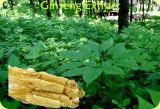 Extrato natural do Ginseng de Panax do extrato do Ginseng da fonte da fábrica
