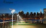 Classificação IP IP65 e fonte de luz LED de luz da rua solar integrada