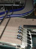 Haut de lamelles Hairise convoyeur à chaîne système utilisé dans l'usine de boissons