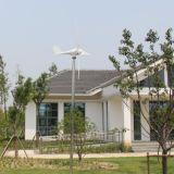 Новый тип 600W 12V/24V/48V генератор ветротурбины 3 участков микро- для домашнего Китая