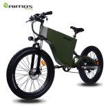 Heißer fetter Gummireifen-elektrisches Fahrrad des Verkaufs-Sport-36V 8.8ah