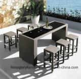 Mobilia esterna del rattan di vendita della mobilia che pranza gli insiemi casuali (TG-JW64)