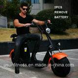 Deux retirent la batterie pour la moto électrique de cocos de ville de scooter