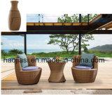 /Rattan esterno/presidenza & Tabella del rattan mobilia del giardino/patio/hotel ha impostato (HS 1238C&HS1238ET)