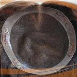 Het Braziliaanse Haarstukje van de Grens van het Kant Pu van het Haar Volledige (pPG-l-0496)