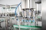 Machine d'embouteillage d'eau potable automatique à échelle réduite pour des bouteilles d'animal familier