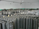 Stainless Steel Screen Mesh Weave Wire Mesh