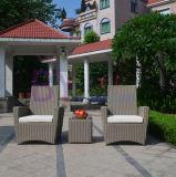 De grijze OpenluchtPE van de Vrije tijd van het Hotel van de Tuin Comfortabele Bank van de Rotan