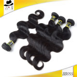 Produtos de cabelo T1 do cabelo 7A brasileiro na linha