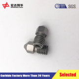 Becs de pulvérisation de tungstène de qualité avec 0.4mm dans l'orifice et le M6