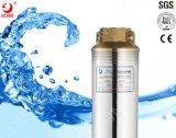 4インチ李元HPの高く効率的な深い井戸水Qj 2つのポンプ