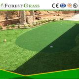 Зеленые или поле для гольфа или ворота мяч искусственных травяных лужайки (GFN)