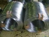 201 304 321 316 metal da bobina do aço inoxidável de 316L 310S 904L