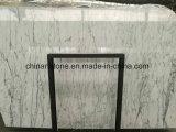 Сляб Китая оптовый Bianco Carrara белый мраморный для плитки и Countertop