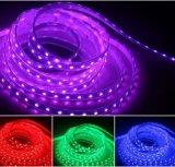 Los LED 300/ 60 LED Impermeable IP66/M5050 SMD LED flexibles tira de luces.