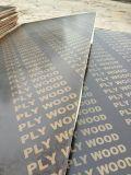 2mm 15mm 18mm película fenólica enfrenta la construcción de madera contrachapada de