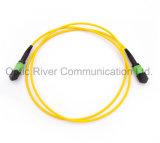 32f Sm perte Standard dfo-mpo Patchcord cavalier du connecteur à fibre optique
