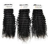 大広間(等級9A)のためのブラジルのねじれた巻き毛の加工されていないバージンの毛