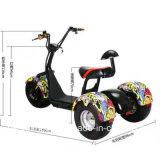 جيّدة نوعية مسافر [تثك] درّاجة ثلاثية شمسيّ كهربائيّة لأنّ مسافر