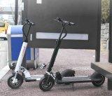 Колесо 2 ватта 1000W 2 Hotsale 500watt 600 складывая миниый E-Bike Ebike E-Самоката
