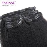 Clip brasiliana dei capelli umani di Yvonne nel colore diritto crespo 1b di estensioni dei capelli
