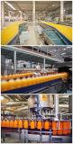 Machine de remplissage de bouteilles PET de jus de fruits de la machine de remplissage à chaud de machines de remplissage