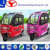 Автомобиль Shifeng электрический/самокат мотора/электрический мотор Car/E-Car/EV/электрическое Car/E-Car/Car
