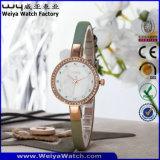Orologi su ordinazione di modo delle signore della vigilanza del quarzo di marchio (WY-075B)