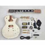 Afanti DIY Lp 기타 장비/Lp 주문 일렉트릭 기타 (CST-930)