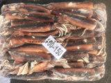 イカの価格の/Illexの中国の大きいフリーズされたイカ