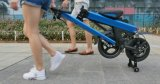 LEDのヘッドライトが付いている250With36Vツーリストの自転車の電気折るバイク