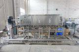 Auromaticペットペットボトルウォーターの瓶詰工場の工場包装ラインのための完全な2ton 5ton 6ton 8tonの純粋な天然水の清浄器フィルター処理場装置