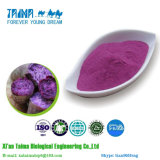 Порошок цвета сладкого картофеля высокого качества органический китайский пурпуровый