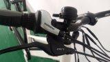 Nueva señora E Bike de la ciudad 2017 con la batería de litio de la potencia verde