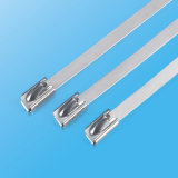 Kundenspezifischer Edelstahl-Kabelbinder im unterschiedlichen Material