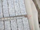 中国の磨かれた特定のサイズにカットされた花こう岩、ホテル、端末のためのG603花こう岩の床タイル