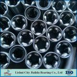 Buona qualità e cuscinetto lineare di precisione con tutto il d'acciaio (serie OP di LM… GA)