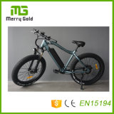 7개 속도를 가진 바닷가 함 48V 500W Ebikes 중국 공장 E 자전거 MTB 전기 자전거