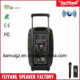 새로운 휴대용 오디오 전문가 DJ Bluetooth 스피커 상자 F23