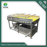 Best Quality Type Machine à laver Rolling Brush Fruit Cleaner