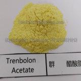 Poudre anabolique injectable de jaune d'acétate de Trenbolone pour le gain de muscle