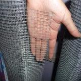 L'elettrotipia di pollice di 1/2 ha galvanizzato/rete metallica saldata galvanizzata tuffata calda