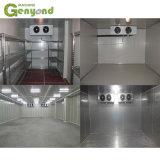 Sonda de oxigénio do ar condicionado controlado de CO2 12V 220V 380V alimentos vegetais de carne de peixe na Sala de Armazenagem Fria de sorvete de fechadura de porta de congelador rápido de exibição