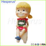 이 수공예 치과의사 선물 수지 기술 비치하는 약품 Hesperus