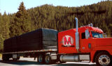 جنوبيّة أمريكا [630غسم] علامة تجاريّة كبيرة يطبع [أوف] مقاومة [روتبرووف] شاحنة خشب منشور [تربس]