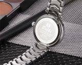 Belbi três relógios pequenos do presente das senhoras do seletor do diamante da cor