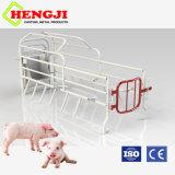 La caja de partos de cerdo con piso de hierro fundido