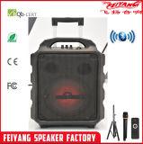 Temeisheng/Feiyang nuovo Stlye 35W altoparlante esterno del sistema acustico della fase di concerto del carrello da 6 pollici con la batteria ricaricabile SL06-09