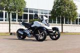 200cc Shaft Motor Triciclo Motocicleta ATV (LT 200MB2)